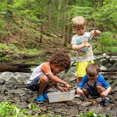 Aiutare i bambini ad imparare attraverso la natura