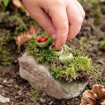 Costruire giardini fatati per gli abitanti del bosco
