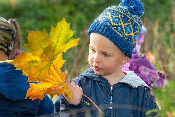 autumn_leaf_article_image_6