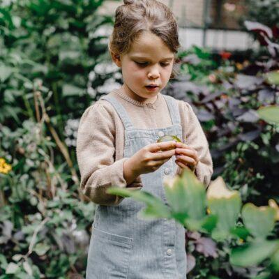 Giardinaggio per bambini: attività da fare in casa